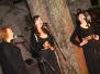 Koncert s Klapo Kumpanji - Štanjel, 8. 6. 2013